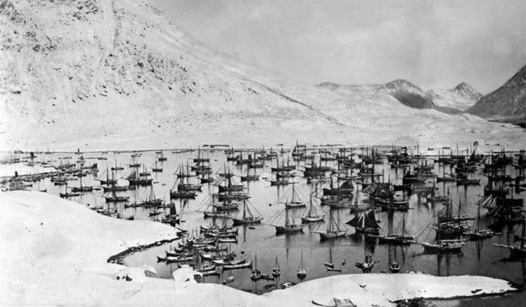 Lofotfiske i Vaterfjorden
