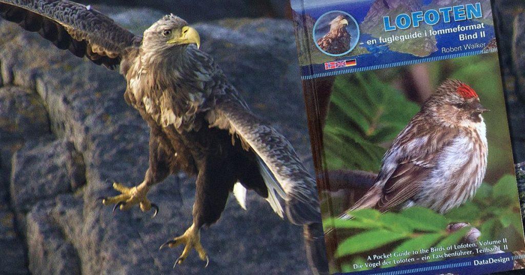 Coverbilde for ny fuglebok fra Robert Walker