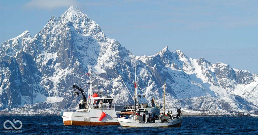To fiskebåter foran fjellet Vågakallen