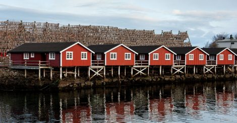 Svinøya Rorbuer i Svolvær